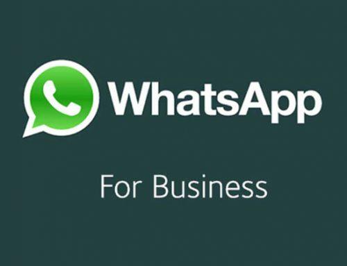 Comunica velocemente con i tuoi contatti grazie a WhatsApp Business.